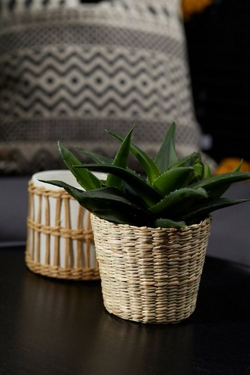 Natural beige Small Woven Seagrass Planter