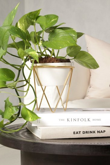Gold Planter And Stand