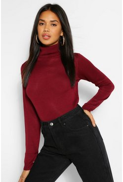 Berry Basic Rib Knit Roll Neck Jumper