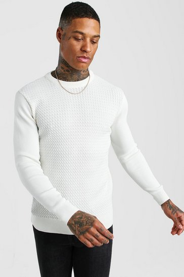 Cream white Textured Crew Neck Muscle Fit Jumper