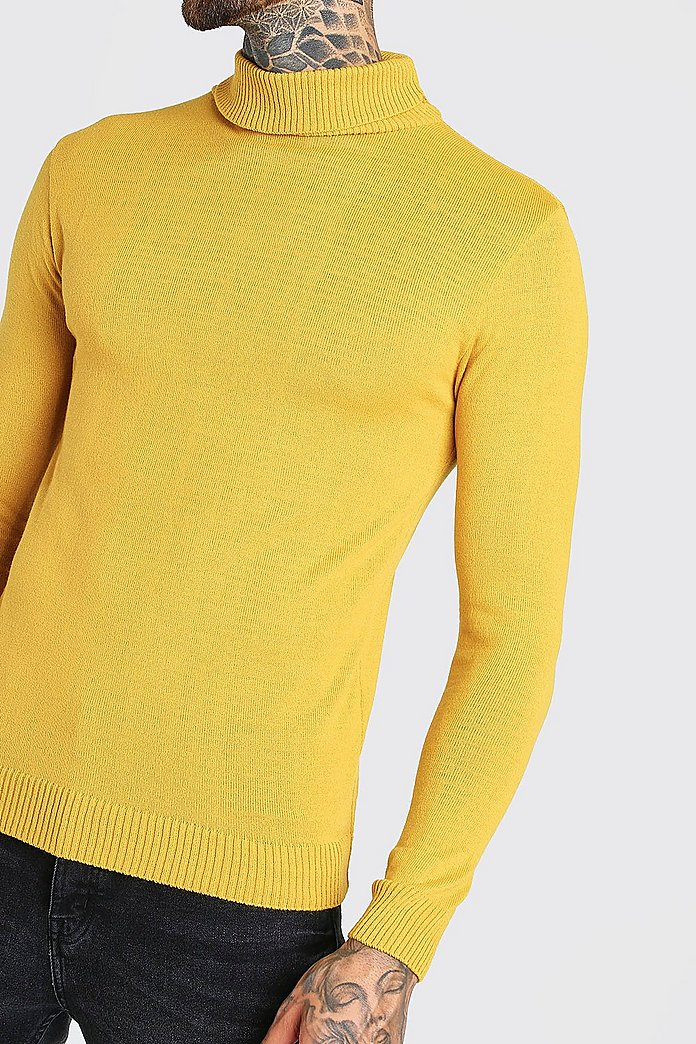Pull col roulé coupe basique | boohoo