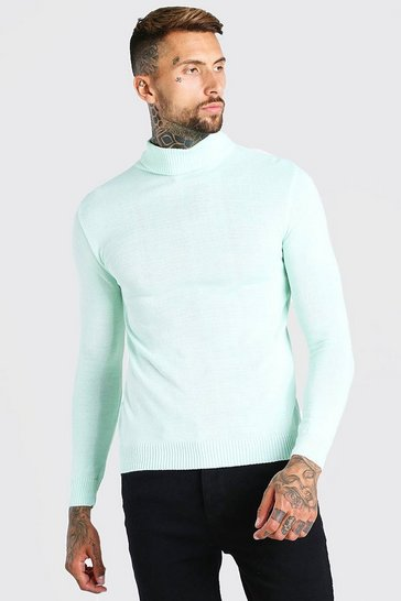 Mint green Regular Fit Roll Neck Jumper