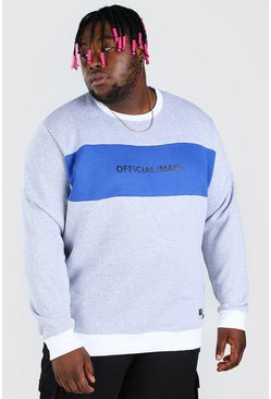 Grey Plus Size Official MAN Colour Block Sweater