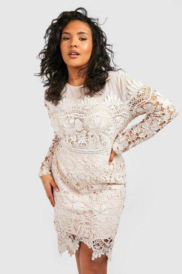 Cream white Plus Occasion Embroidered Floral Midi Dress