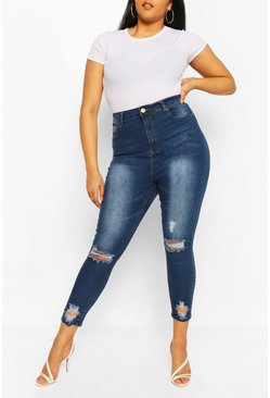 Blue Plus Distressed Skinny Jean